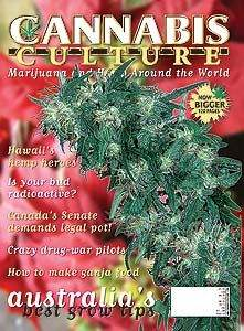 Cannabis Culture Magazine article on The Hawai'i Cannabis (THC) Ministry